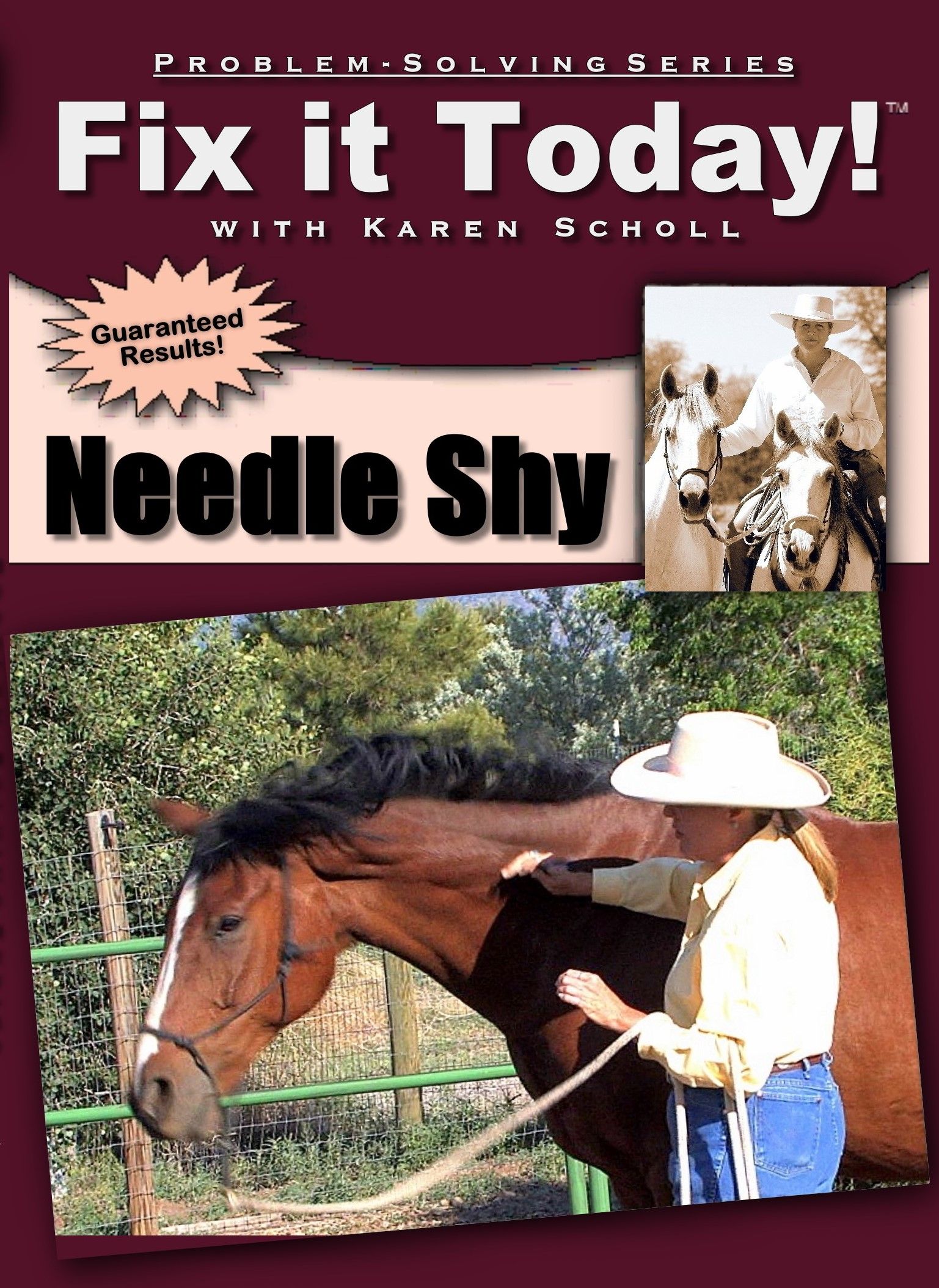 Fix It Today! NEEDLE SHY