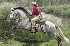 Horsemanship instructional materials