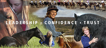 Horsemanship instruction and products